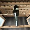 8F5A509A-FF98-42E7-AB9A-D39556F1D4CF: Wine fridge question
